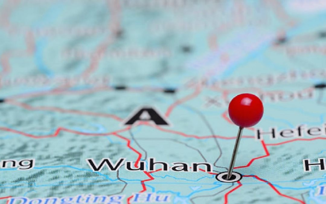 Wuhan finds no new COVID-19 cases in city-wide testing