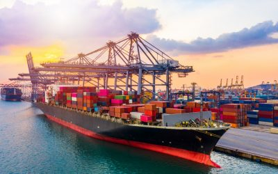 Back to business: UAE reaffirms continued support to exporters and businesses to recover from COVID-19