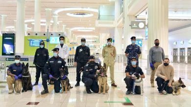 Photo of WATCH: UAE deploys K9 dogs to sniff out COVID-19 patients  at airports after pioneering experiment