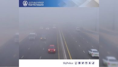 Photo of Fog causes 21 vehicle pile-up accident in Sharjah
