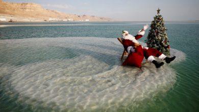 Photo of Man dressed as Santa brings Christmas tree to Dead Sea