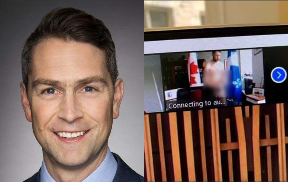 Canada MP accidentally shows up naked on parliamentary